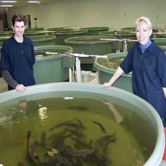Different Career Options In Marine Biology