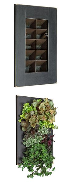 Black GroVert Vertical Planter Frame Kit - could be used for creating a little privacy for the patio Diy Herb Garden, Indoor Garden, Indoor Plants, Herbs Garden, Indoor Herbs, Vertikal Garden, Types Of Herbs, Vertical Planter, Decoration Plante