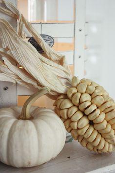 Still life of corn & ghost pumpkin.