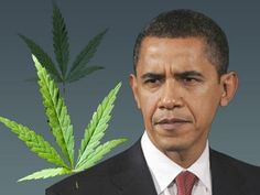 "President Barack Obama pledged on Friday that he will not go after Washington state and Colorado for legalizing marijuana.    Obama was asked -- in a Barbara Walters interview airing Friday on ABC -- whether he supports making marijuana legal, reported The Associated Press. ""I wouldn't go that far,"" the President said."