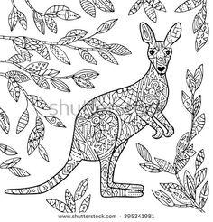 Vector Kangaroo Illustration Adult Coloring Page
