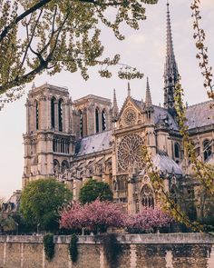 The Notre Dame Cathedral. Our thoughts and prayers are with the people of Franc… The Notre Dame Cathedral. 🙏 Our thoughts and prayers are with the people of France and Paris. Paris France, France Europe, Places To Travel, Places To See, Ville France, Notre Dame France, Paris City, Kirchen, France Travel