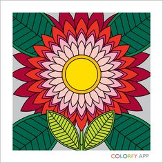 Just Made This On Colorfy And Love it | Creation #4