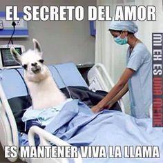 Este es el secreto del amor para mantener viva esa Llama y no dejarla morir_2