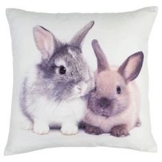 No room is complete without a bunny cushion