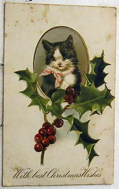 M4447 CHRISTMAS POSTCARD, CAT