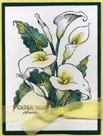 Scrapbooking.com -- Scrapbooking.com -- Layout - Calla Lily by Joanne English