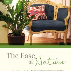 Nature - an easy way to make your space beautiful. #theperpetualyou #createease #embracebeauty #dwell #dwellonthis