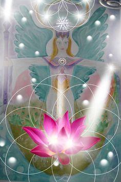 @solitalo  Estamos muy agradecidos con Ariel y con Kwan Yin por haberle dado al planeta la información respecto al chakra unificado. El cambio hacia el chakra unificado, es el cambio más vita…