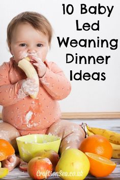 10 Baby Led Weaning Dinner Ideas Your Whole Family Will Love - Crafts on Sea