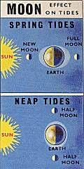 Moon-Effect On Tides