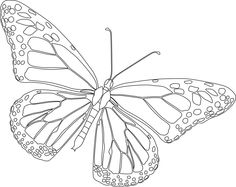 monarch butterfly coloring pages for kids printable butterflies coloring pages for kids