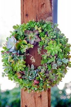 Succulent Wreath Or Centerpiece By SucculentDESIGNS This gorgeous handmade succulent wreath would add a nice touch of greenery to the patio.