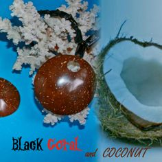 @BlackCoral4you black coral jewelry handcraft pendants, earrings, beads, necklaces  blackcoral4you.wo... pendientes de coral negro, cuentas, collares, joyeria hecha a mano  mail: blackcoral4you@ga... Galicia - SPAIN 100% HandMade #necklaces #coral #necklaces #joya #beads #black #jewellery #brazaletes #diy #cuentas #coco #925 #handcraft #coconut #sterling #gioielli #bijoux #corail #koralli #most #popular #spring #summer #fashion