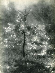 "via yama-bato: Josef Breitenbach (German/American, ""Illuminated Tree"". Noel Christmas, Christmas Morning, Vintage Christmas, Xmas, Time Photography, Original Vintage, Illustrations, American, Photo Art"