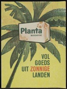 Planta (boter) Kijk voor meer merken op www.VerdwenenMerken.nl Vintage Advertisements, Vintage Ads, Old Commercials, Advertising Poster, Vintage Pictures, History, Posters, Butter, Touch