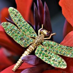 Jewelry Art, Jewelry Ideas, Vintage Jewelry, Jewellery, Wallpaper Iphone Love, Upper Crust, Extreme High Heels, Dragon Flies, Garden Crafts