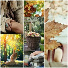 moodboard autumn