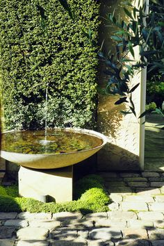 Why You Should Invest In Simple Water Features For Your Home Garden – Pool Landscape Ideas Backyard Water Feature, Ponds Backyard, Garden Pool, Water Garden, Backyard Waterfalls, Koi Ponds, Shade Garden, Outdoor Water Features, Water Features In The Garden