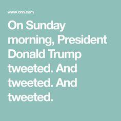 trumps sunday morning tweets - 236×236