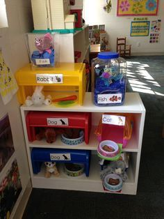 Preschool Dramatic Play Area Pet Theme Pet Shop Veterinarian Vet Clinic