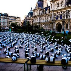 9 of the Most Shocking Guerrilla Marketing Campaigns of All Time - WWF Pandas