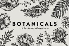 Botanicals / detaile