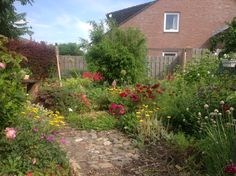 Onze tuin in 2013