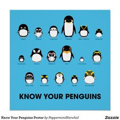 Know Your Penguins Poster Perfect Poster