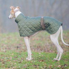 dog coat - notonthehighstreet.com
