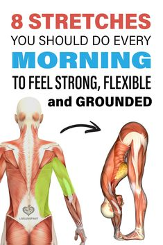 stretching anatomy with text - 8 stretches you should do every mornng to feel strong, flexible, and grounded