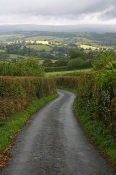 U.K. Hedgerows, Narrow roads of Dartmoor National Park, Devon, England