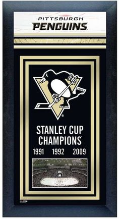 Stanley Pittsburgh Penguins Cup Champions Framed Wall Art