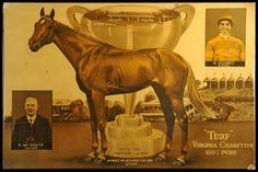 1934 Peter Pan - Melbourne Cup winner - Google Search