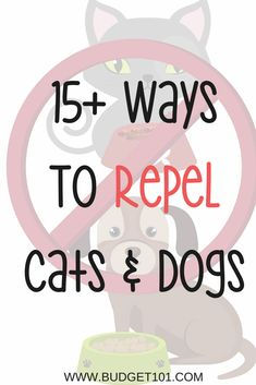 Ways to Repel Cats and Dogs away from gardens and landscaping
