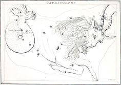 constellations drawings - Google Search
