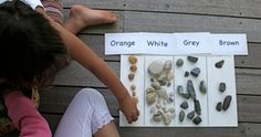 collect and sort rocks {size, weight, colour} #rocks