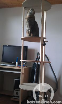 cat tree tutorial