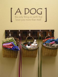 Yuppy Puppy Laundry Room, Weve dedicated a wall for our dog stuff: leashes, bandanas, etc. This wall is in our laundry room.  It makes me happy when I see it and all my dog-lover friends can relate., Within the laundry room  , Other Spaces Design