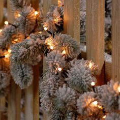 Festive 520 Warm White Glow Worm Lights