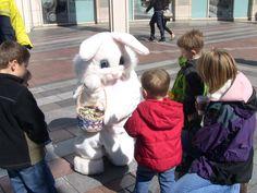 Metropolitan Improvement District Easter Bunny! April 6, 2012