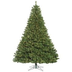 666e3c3036a9 The Holiday Aisle 6.5  Fir Artificial Christmas Tree with 700 Clear Lights