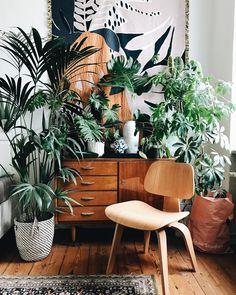 "4,179 likerklikk, 37 kommentarer – Jules Villbrandt (@herz.und.blut) på Instagram: ""Bye bye balcony season. Hello indoor jungle. #interiorinspo #interior #altbau #plywood #sideboard…"""