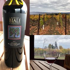 We really enjoyed these images from a visit to our tasting room by Twitter follower @YukizTweets  #napavalley #winery #wine #petitesirah #robertbialevineyards #zinfandel #redwine #bialevineyards #blackchicken #tastingroom Black Chickens, Tasting Room, Napa Valley, Red Wine, Vineyard, Alcoholic Drinks, Twitter, Image, Vine Yard