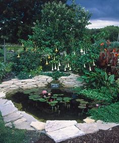 01 awesome backyard ponds and water garden landscaping ideas Backyard Water Feature, Ponds Backyard, Pond Landscaping, Landscaping With Rocks, Water Features In The Garden, Garden Features, Fine Gardening, Organic Gardening, Natural Pond