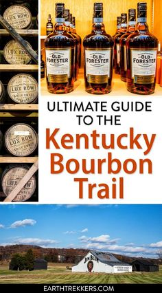 How to have the best experience on the Kentucky Bourbon Trail. Best time to go, planning your itinerary, visiting with kids, includes Buffalo Trace. Best Bourbon Whiskey, Bourbon Tour, Whiskey Trail, Scotch Whiskey, Bourbon Cocktails, Irish Whiskey, Best Bourbons, Vacation Spots, Vacation Ideas