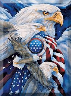 Eagles and flag
