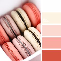brick red, color matching, color of the macaroon, color solution, cream, peach tones, peach-pink, Red Color Palettes, shades of pink, White Color Palettes.