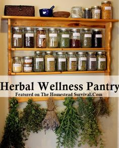 The Homestead Survival | Herbal Wellness Pantry | http://thehomesteadsurvival.com