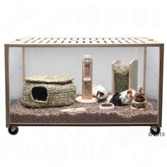 Living World Green Eco Habitat: an innovative indoor cage made of environmentally friendly rubber wood. With four rollers, easy to assemble. Cool Hamster Cages, Hamster Habitat, Hamster Care, Syrian Hamster, Hamster House, Hedgehog House, Indoor Guinea Pig Cage, Guinea Pig House, Teacup Pigs